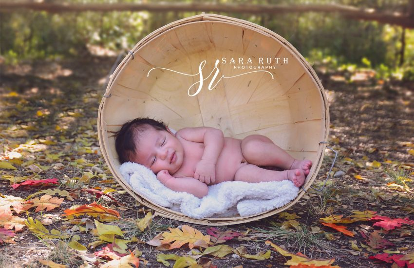 SR Photography - Newborn